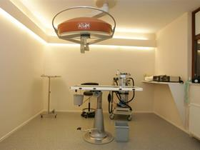 Main surgery room - Surgery and anesthesia