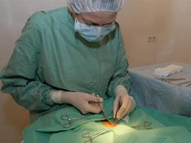 Dr Heyneman during the surgery