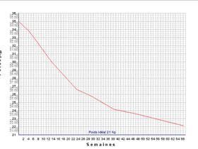 Weight loss curve - Prevention and treatment of obesity