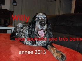 Best wishes from Willy