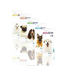 Bravecto one tablet kills fleas and ticks for 3 months