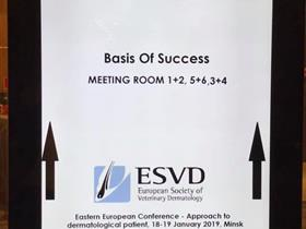 ESVD conferences for Eastern countries: Minsk